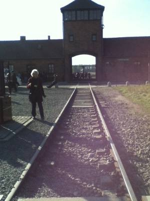 Lessons of Auschwitz Project
